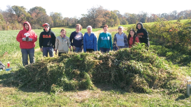 Photo courtesy of UCare Students volunteer at Camphill Community garden last year.